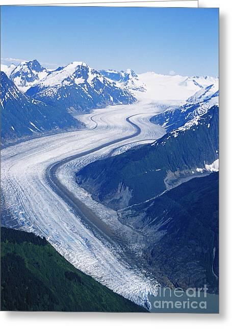 Merging Greeting Cards - Wright Glacier Greeting Card by Gregory G. Dimijian, M.D.