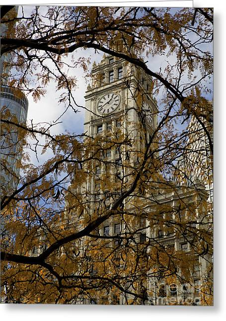 Leslie Leda Greeting Cards - Wrigley Building in Autumn  Greeting Card by Leslie Leda