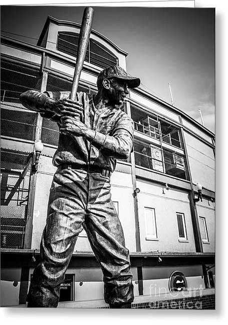 Chicago Cubs Stadium Greeting Cards - Wrigley Field Ernie Banks Statue in Black and White Greeting Card by Paul Velgos