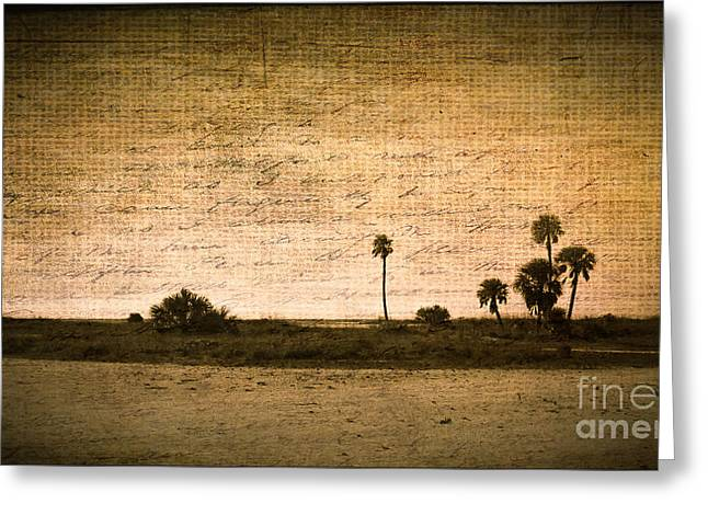 California Beach Art Greeting Cards - Writers Beach Greeting Card by Perry Webster