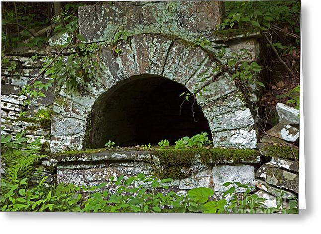 Moss Green Greeting Cards - Written In Stone Greeting Card by John Stephens