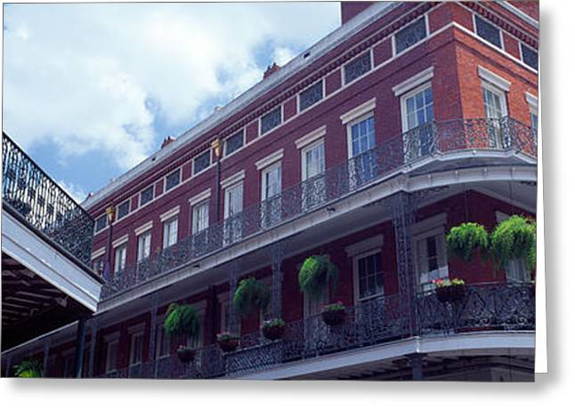 Ornamental Plants Greeting Cards - Wrought Iron Balcony New Orleans La Usa Greeting Card by Panoramic Images