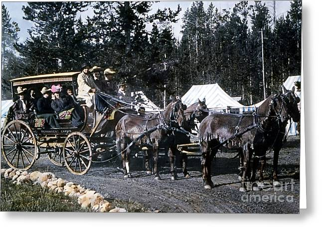 Horse And Buggy Greeting Cards - Wylie Coach Yellowstone National Park Greeting Card by NPS Photo