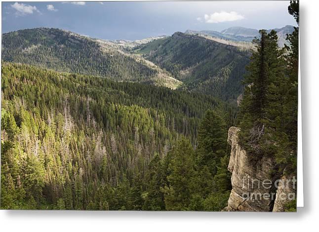 Bridger Teton Greeting Cards - Wyoming Mountain Range Greeting Card by Mike Cavaroc
