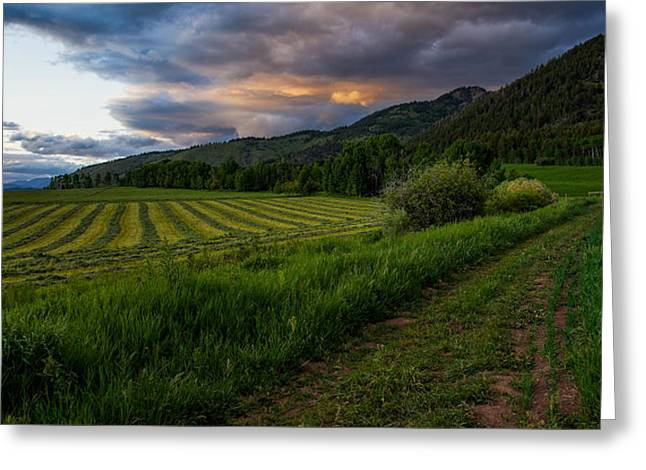 Wyoming Pastures Greeting Card by Chad Dutson