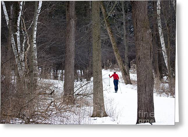 Mendon Greeting Cards - X-country Mendon Ponds Greeting Card by Roger Bailey