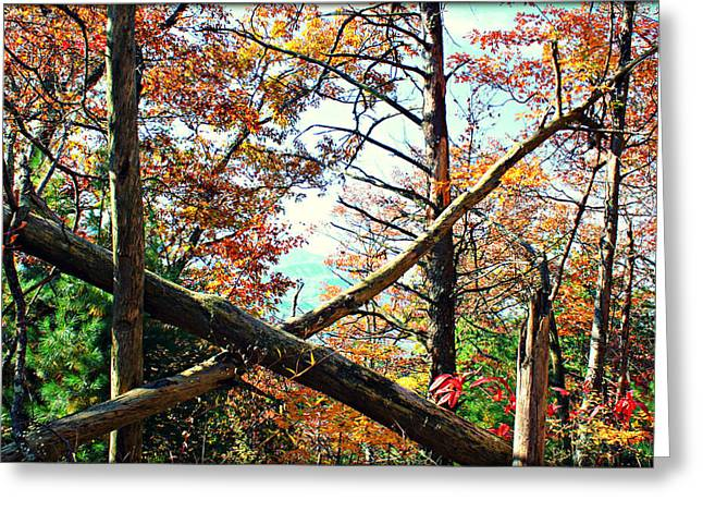Gatlinburg Tennessee Greeting Cards - X Marks The Spot Greeting Card by Susie Weaver