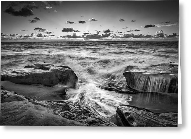 Beach Road Greeting Cards - Confusion Greeting Card by Peter Tellone