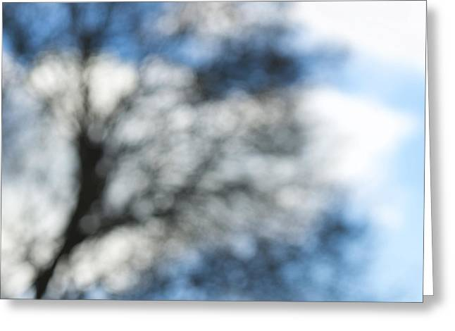 Xpressionism Greeting Card by Steven Poulton