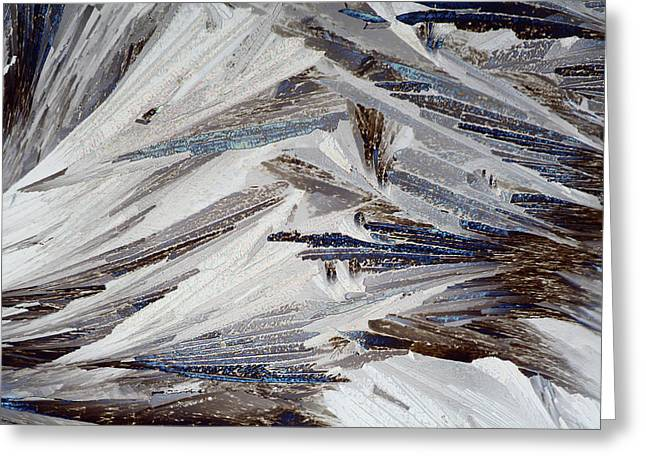 Xylose Crystals Greeting Card by John Durham