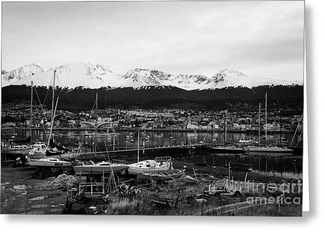 Snow-covered Landscape Greeting Cards - yacht club and snow covered patagonian mountains from Ushuaia Argentina Greeting Card by Joe Fox