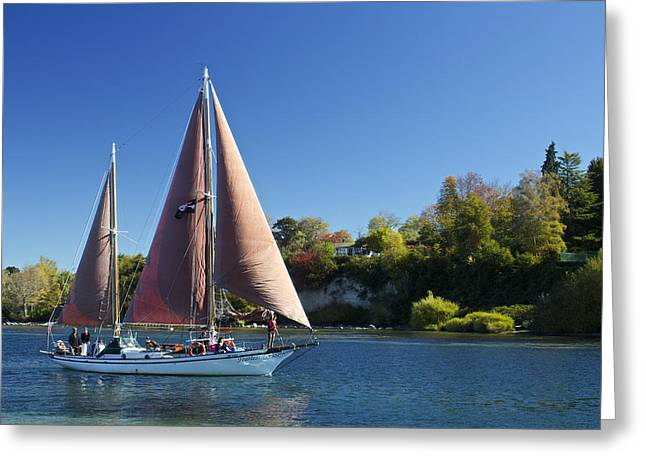 Pirates Greeting Cards - Yacht Fearless on Lake Taupo  Greeting Card by Venetia Featherstone-Witty