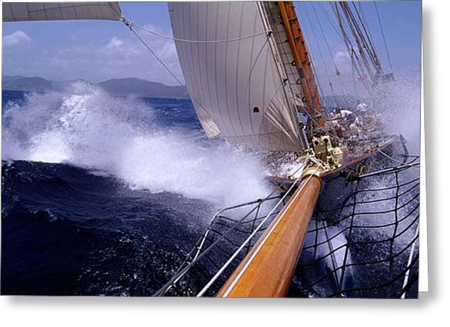 Yacht Race, Caribbean Greeting Card by Panoramic Images