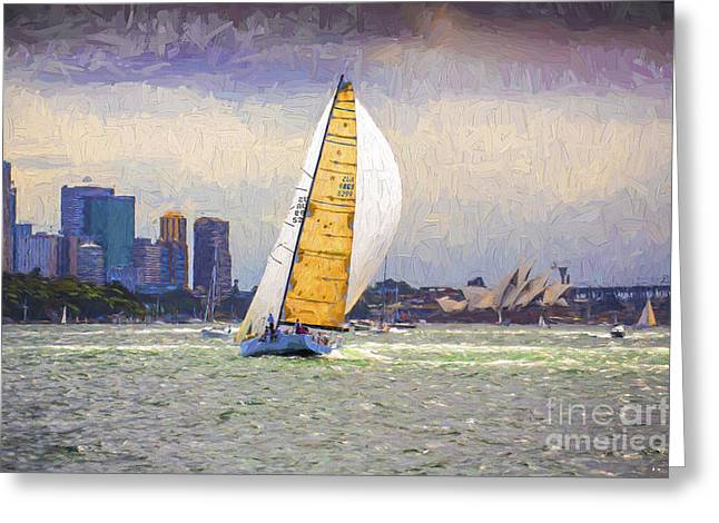 Victoire Greeting Cards - Yacht racing on Sydney Harbour Greeting Card by Sheila Smart