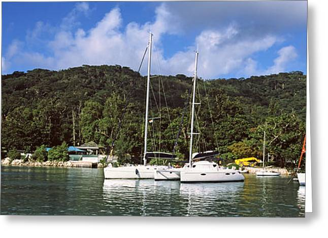 Panoramic Ocean Greeting Cards - Yachts Anchored At The Harbor On La Greeting Card by Panoramic Images