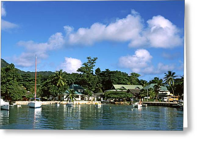 Masts Greeting Cards - Yachts And Small Fishing Boats Greeting Card by Panoramic Images