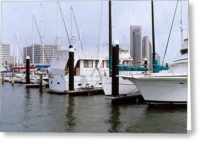 Downtown District Greeting Cards - Yachts At A Harbor With Buildings Greeting Card by Panoramic Images