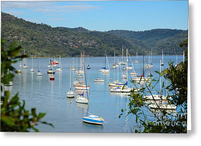 Pastimes Greeting Cards - Yachts in a quiet estuary Greeting Card by David Hill