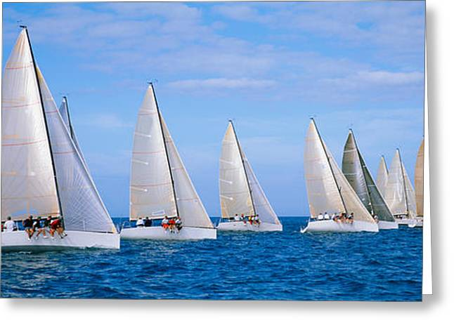 Water Vessels Greeting Cards - Yachts In The Ocean, Key West, Florida Greeting Card by Panoramic Images