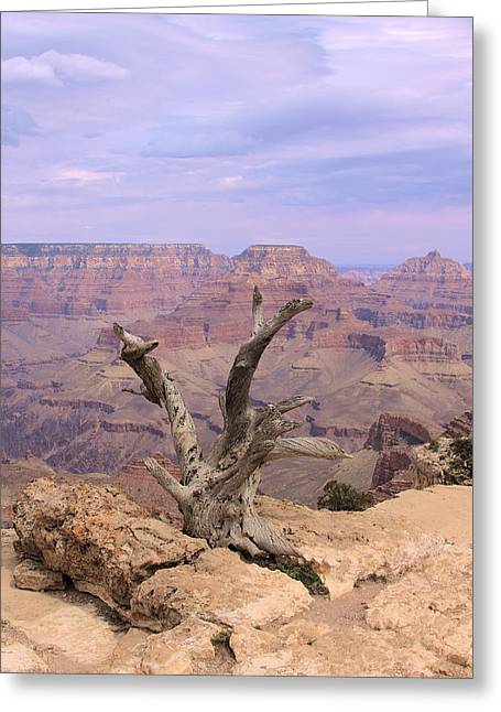 South Kaibab Trail Greeting Cards - Yaki Point  In Grand Canyon Greeting Card by Viktor Savchenko
