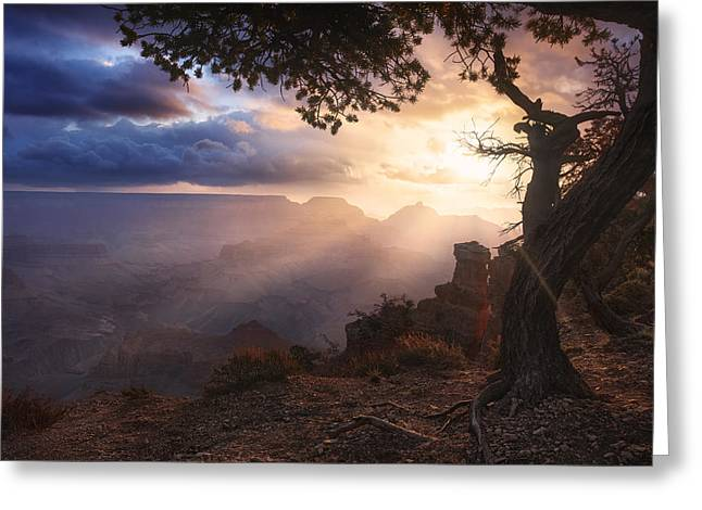 Yaki Greeting Cards - Yaki Point Greeting Card by Michael Breitung