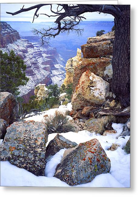 Yaki Greeting Cards - Yaki Point  Greeting Card by Ray Mathis