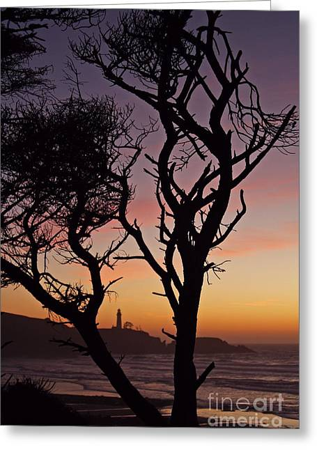 Yaquina Head Dusk Sixty Greeting Card by Donald Sewell