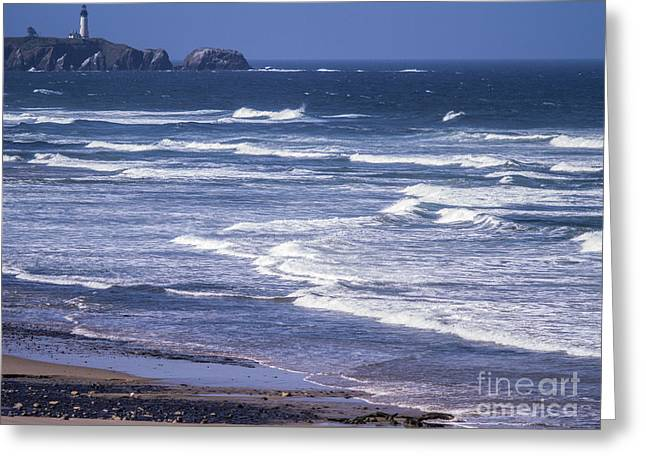 Agate Beach Oregon Greeting Cards - Yaquina Head Lighthouse  Greeting Card by Tracy Knauer
