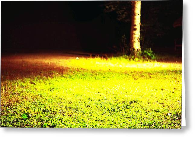 Log Cabins Greeting Cards - Yard at night 4 Greeting Card by Leonid Rozenberg