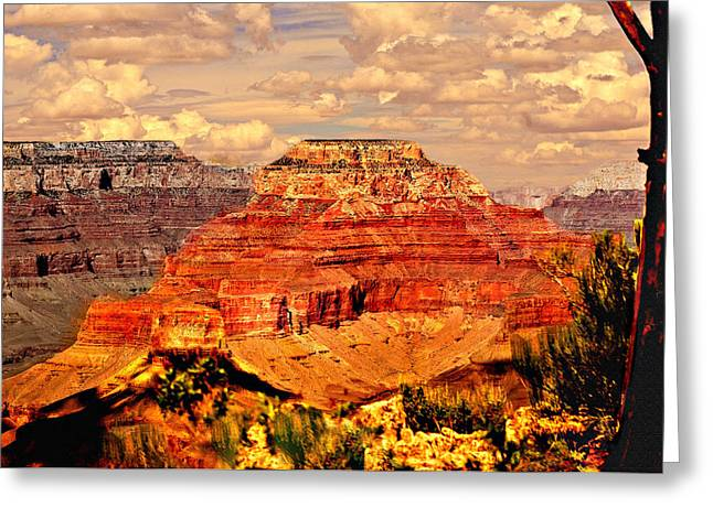 Desertview Greeting Cards - Yavapai Grand Canyon Greeting Card by  Bob and Nadine Johnston