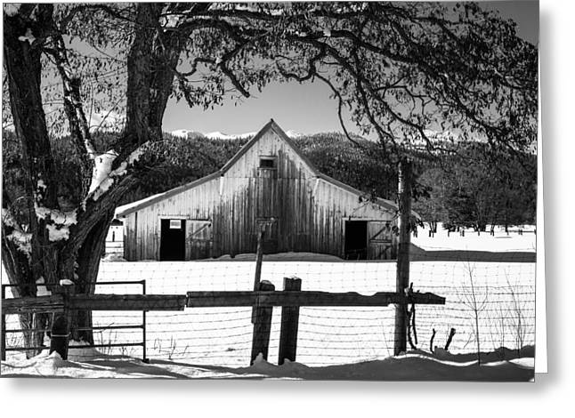 Siskiyou County Greeting Cards - Ye Old Barn Greeting Card by Randy Wood