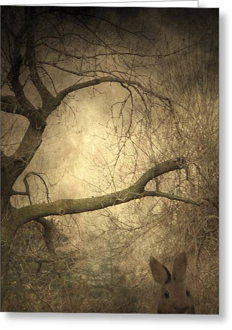 Brown Toned Art Greeting Cards - Year Of The Rabbit Greeting Card by Gothicolors Donna Snyder