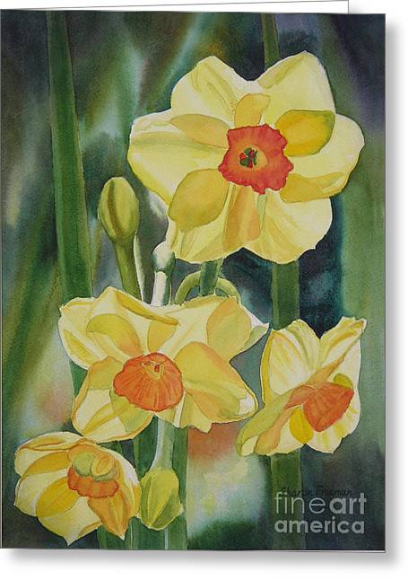 Yellow And Orange Narcissus Greeting Card by Sharon Freeman