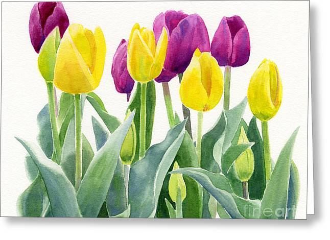 Violet Art Greeting Cards - Yellow and Violet Tulips Horizontal Design Greeting Card by Sharon Freeman