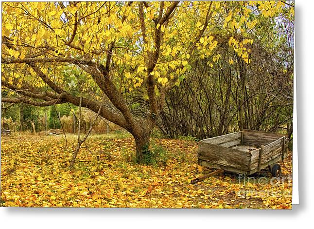 Wooden Wagons Greeting Cards - Yellow Autumn Leaves And Wooden Wagon Greeting Card by Jo Ann Tomaselli