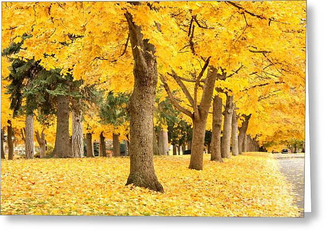 Spokane Greeting Cards - Yellow Autumn Wonderland Greeting Card by Carol Groenen