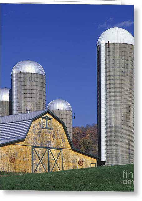 Schuyler County New York Greeting Cards - Yellow Barn and Silos - FM000084 Greeting Card by Daniel Dempster