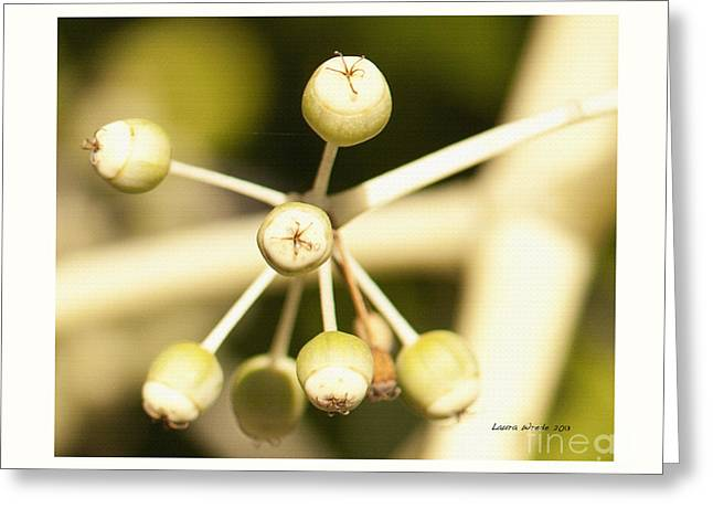 Yellow Berries Greeting Card by Artist and Photographer Laura Wrede