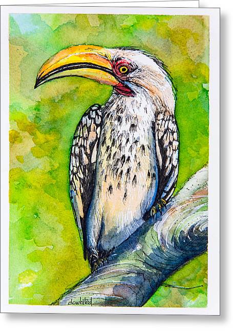 Hornbill Paintings Greeting Cards - Yellow-billed Hornbill Greeting Card by Dave Whited