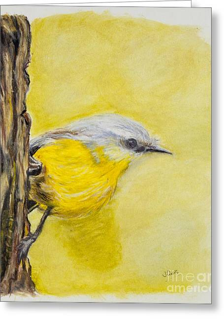 Bird On Tree Pastels Greeting Cards - Looking for Prey Greeting Card by Judith Davis