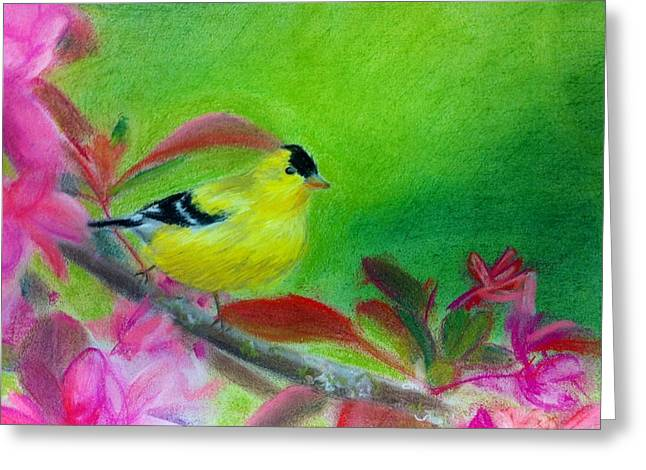 Pink Blossoms Pastels Greeting Cards - Yellow bird Greeting Card by Tiffany Albright
