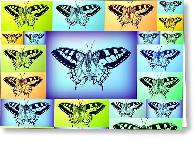 Blue And Green Drawings Greeting Cards - Yellow Blue And Green Butterflies Greeting Card by Cathy Jacobs