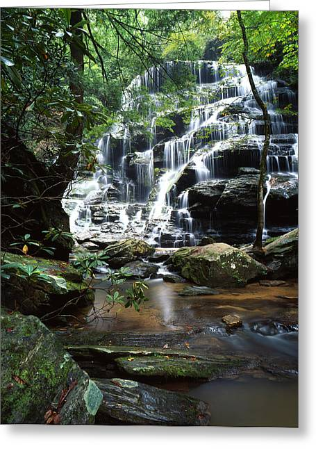 Walhalla Greeting Cards - Yellow Branch Falls Greeting Card by Ray Mathis