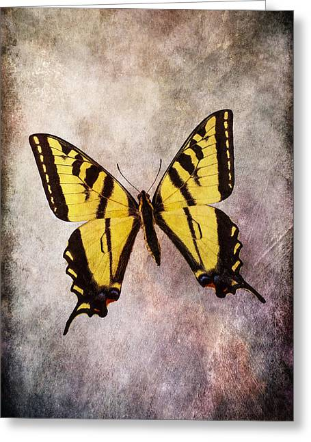 Warm Tones Photographs Greeting Cards - Yellow Butterfly Mood Greeting Card by Garry Gay