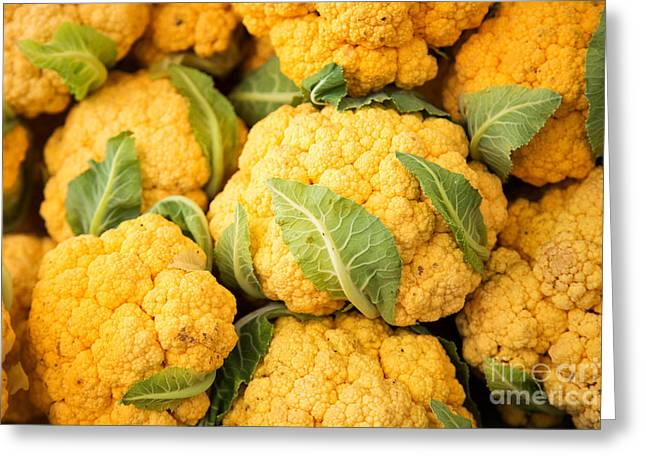 Cauliflower Greeting Cards - Yellow Cauliflower Greeting Card by Rebecca Cozart