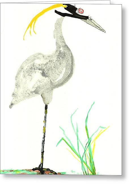 Water Fowl Mixed Media Greeting Cards - Yellow Crested Night Heron Greeting Card by Bernadette Crotty