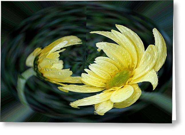 Geometric Effect Greeting Cards - Yellow Daisy in a Bubble Greeting Card by Judy Vincent