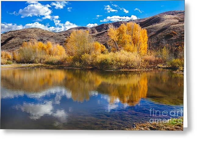Haybales Greeting Cards - Yellow Fall Reflections Greeting Card by Robert Bales