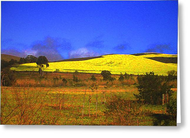 Winelands Greeting Cards - Yellow Fields - South Africa Greeting Card by Lenore Senior and Constance Widen