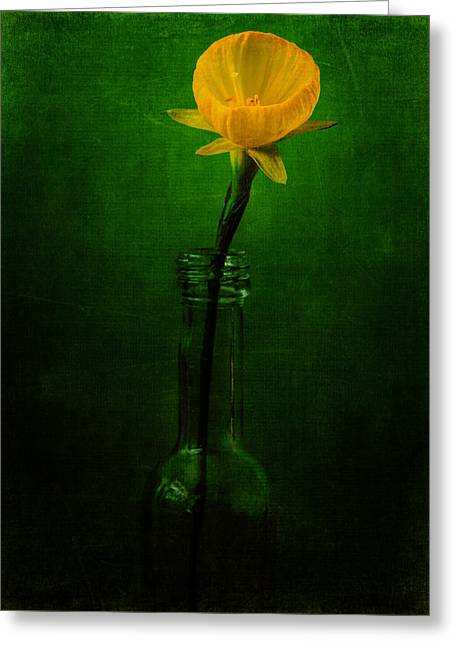 Fine Bottle Greeting Cards - Yellow Flower In A Bottle I Greeting Card by Marco Oliveira